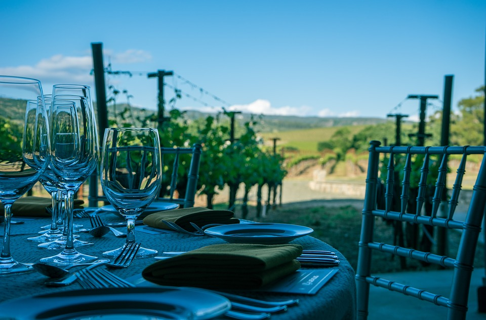 Table and fine dining china set up at the start of a vineyard row