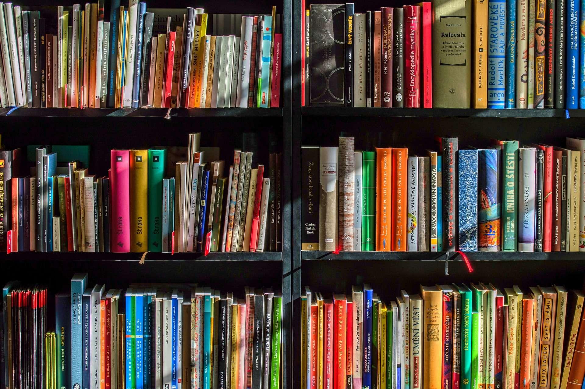 Three rows of books