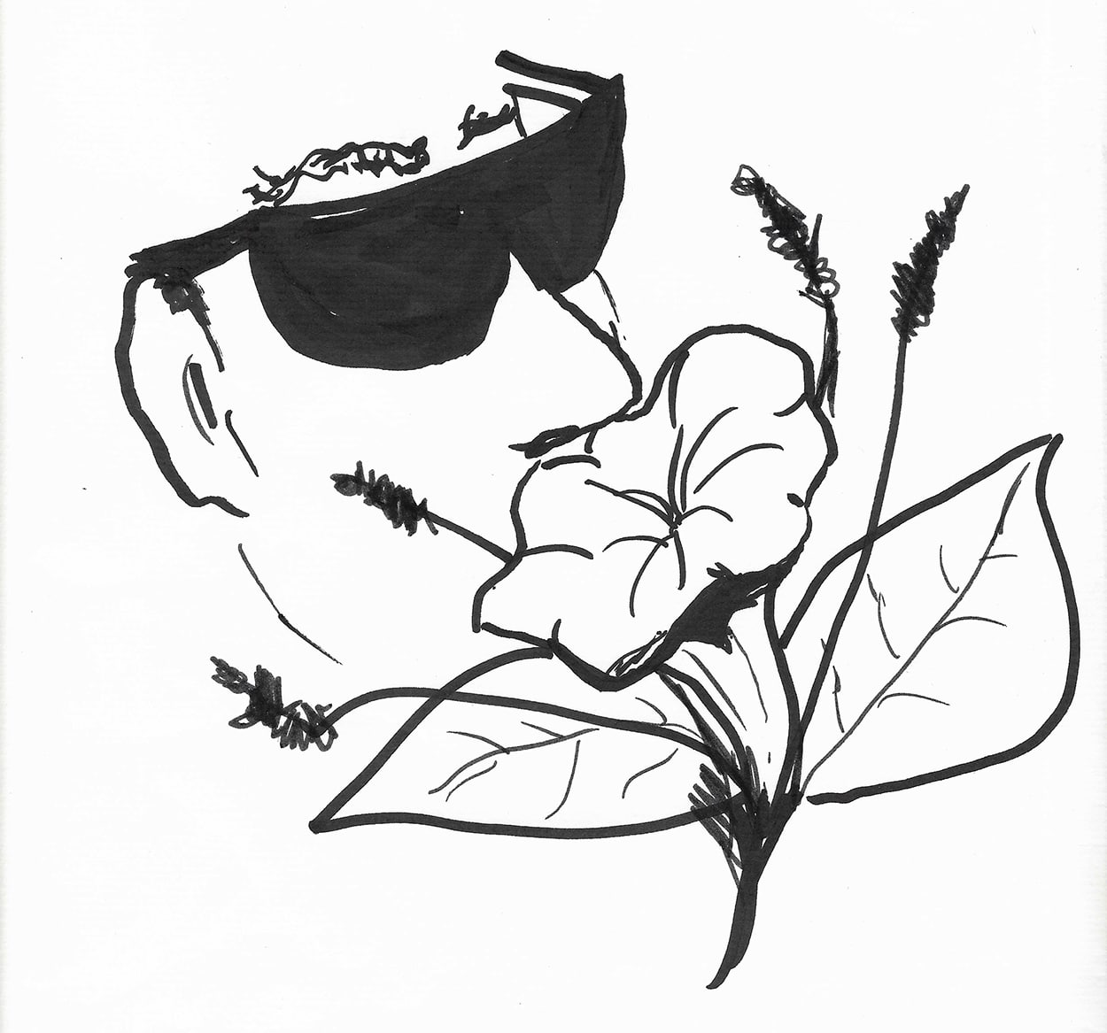Sketch of person with dark sunglasses smelling a flower.